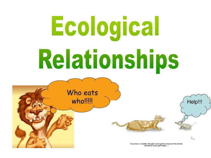 PPT - Ecological Relationships PowerPoint Presentation ...