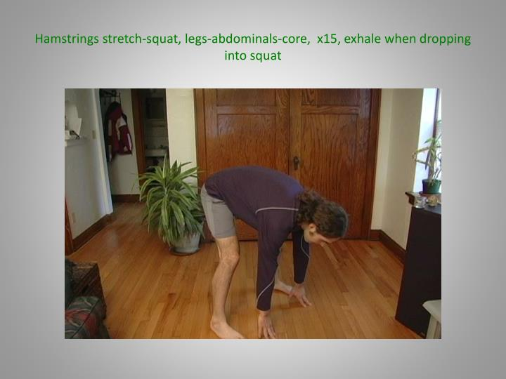 Hamstrings stretch-squat, legs-abdominals-core,  x15, exhale when dropping into squat