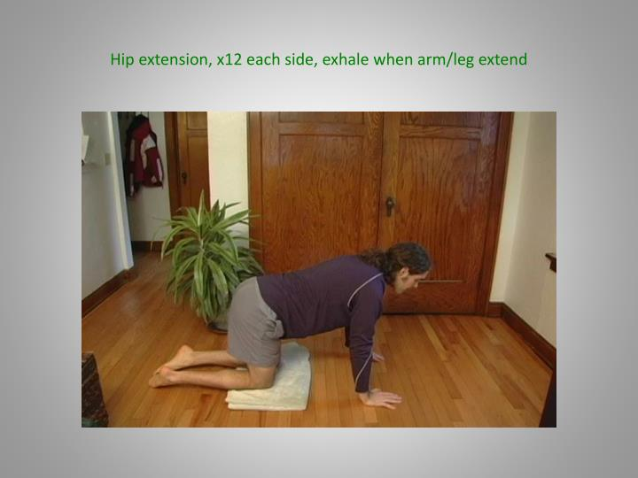 Hip extension, x12 each side, exhale when arm/leg extend