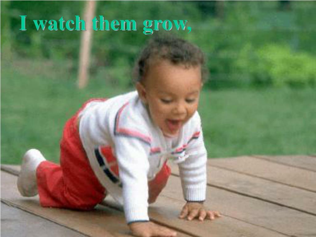 I watch them grow