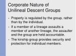 corporate nature of unilineal descent groups40