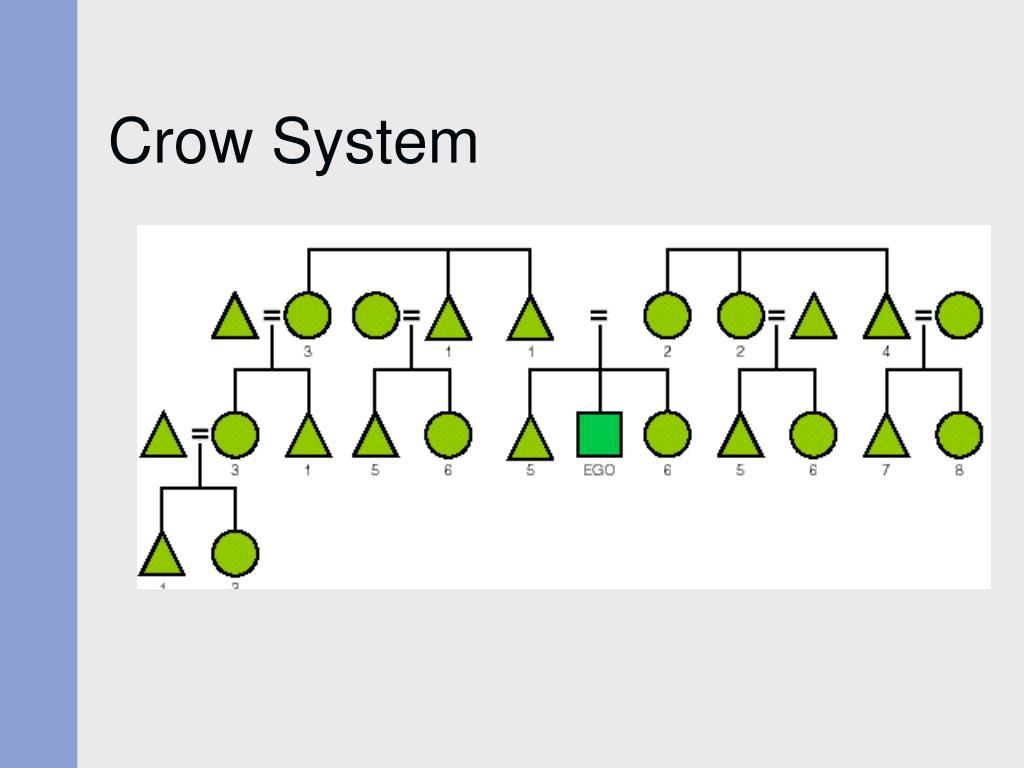 Crow System