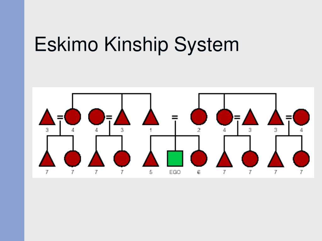 Eskimo Kinship System