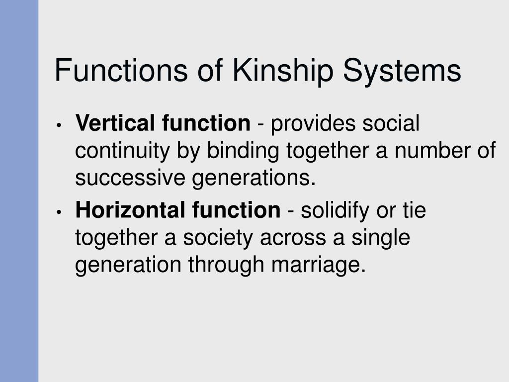 Functions of Kinship Systems