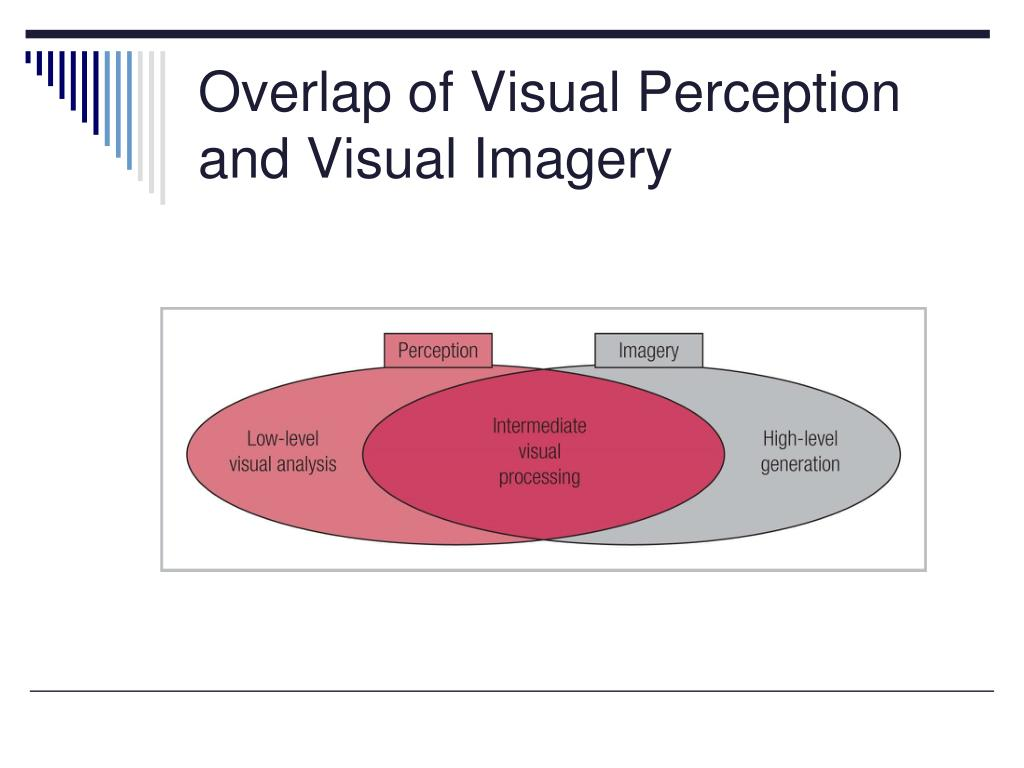 Overlap of Visual Perception and Visual Imagery