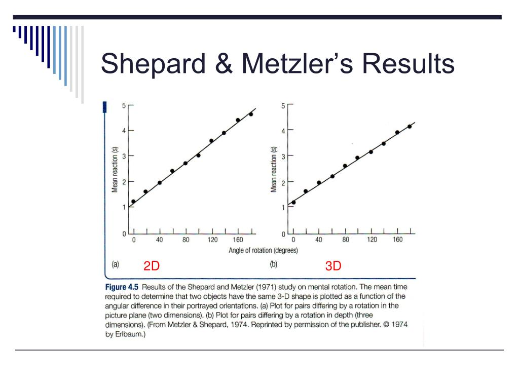Shepard & Metzler's Results