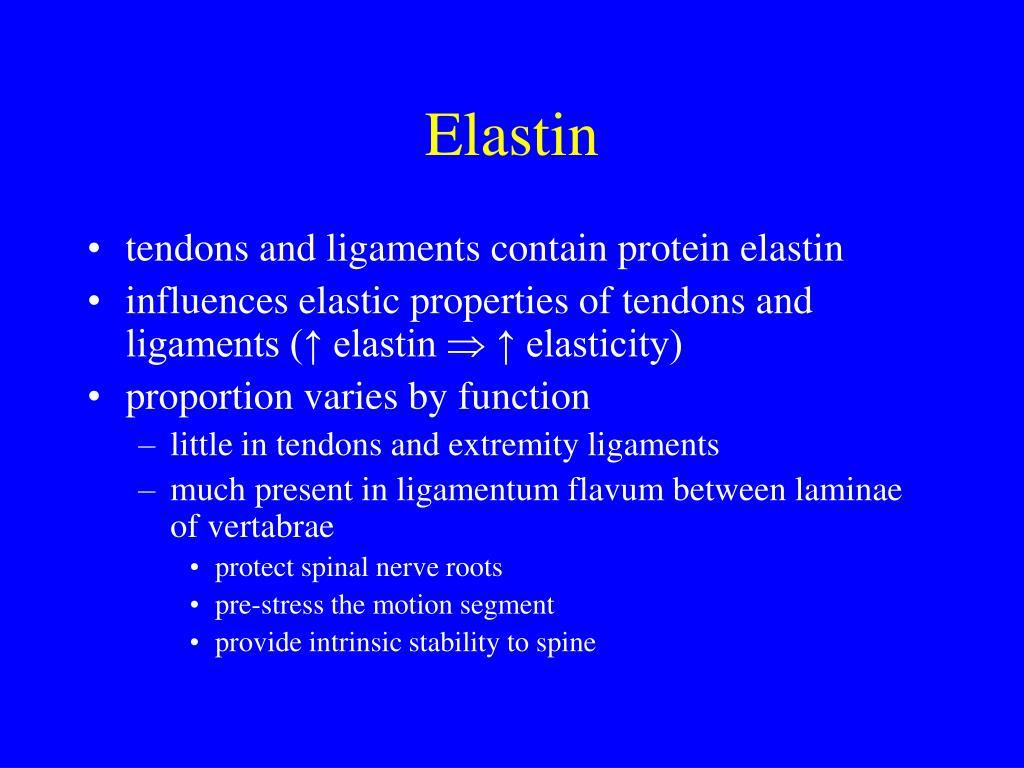 Elastin