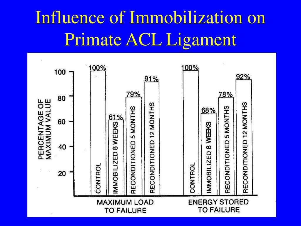 Influence of Immobilization on Primate ACL Ligament