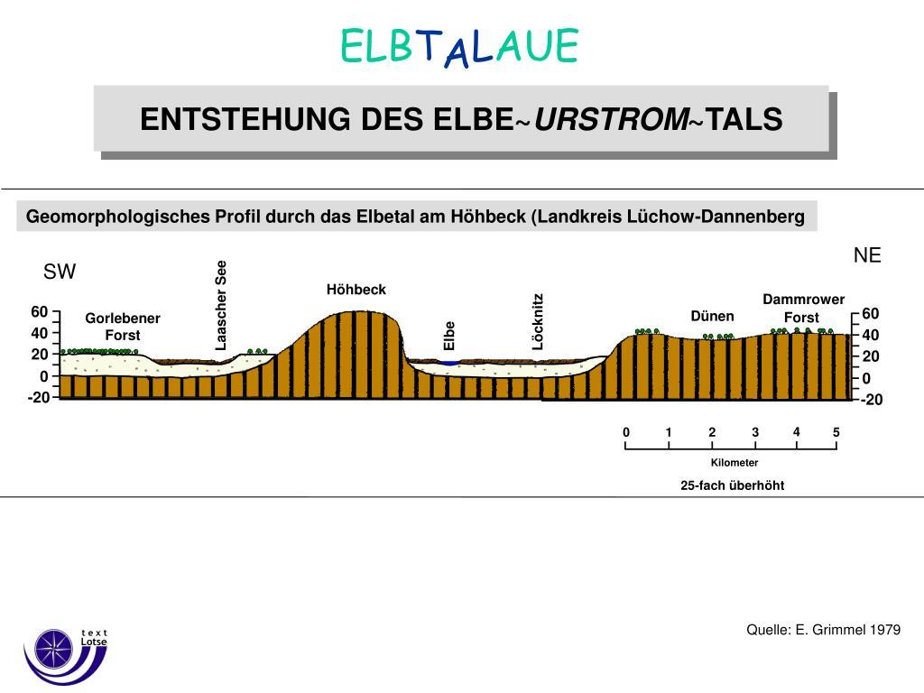 Geomorphologisches Profil durch das Elbetal am Höhbeck (Landkreis Lüchow-Dannenberg