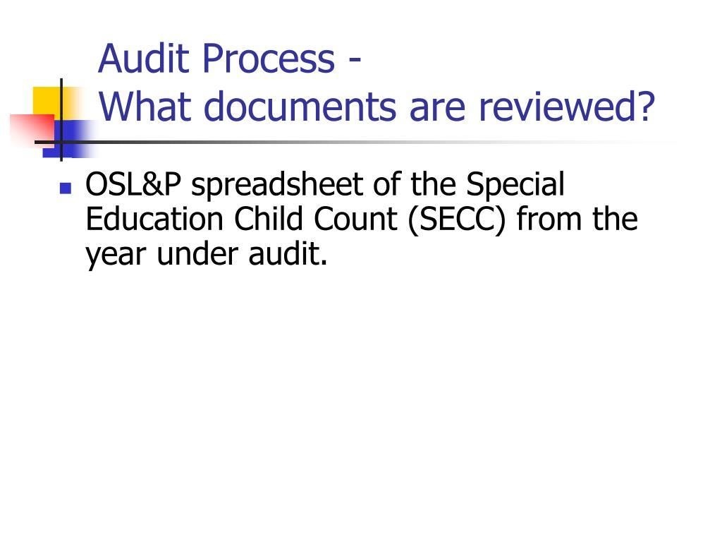 Audit Process -