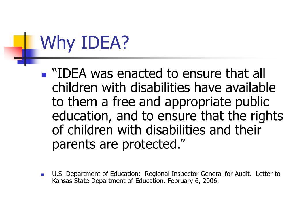 Why IDEA?