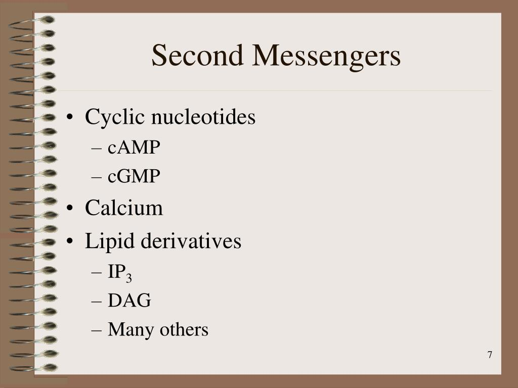 Second Messengers