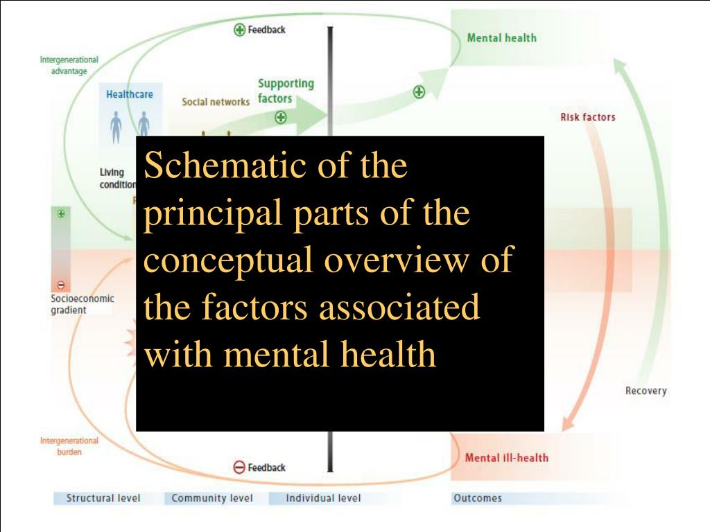 Schematic of the principal parts of the conceptual overview of the factors associated with mental health