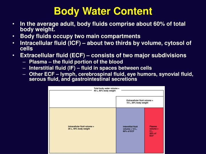 Body water content