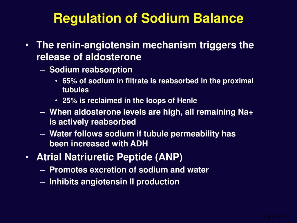 Regulation of Sodium Balance