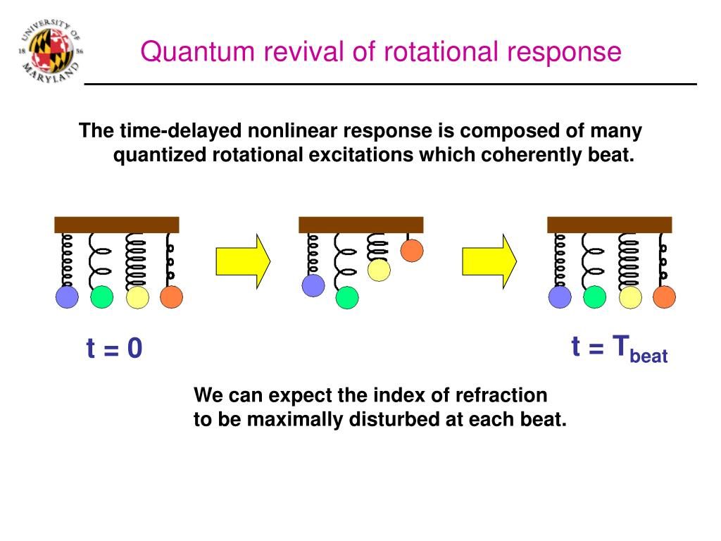 Quantum revival of rotational response