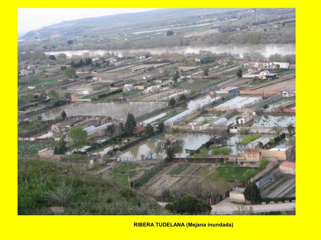 RIBERA TUDELANA (Mejana inundada)