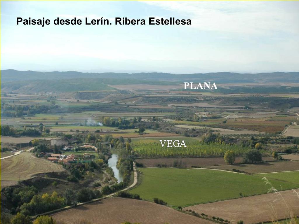 Paisaje desde Lerín. Ribera Estellesa