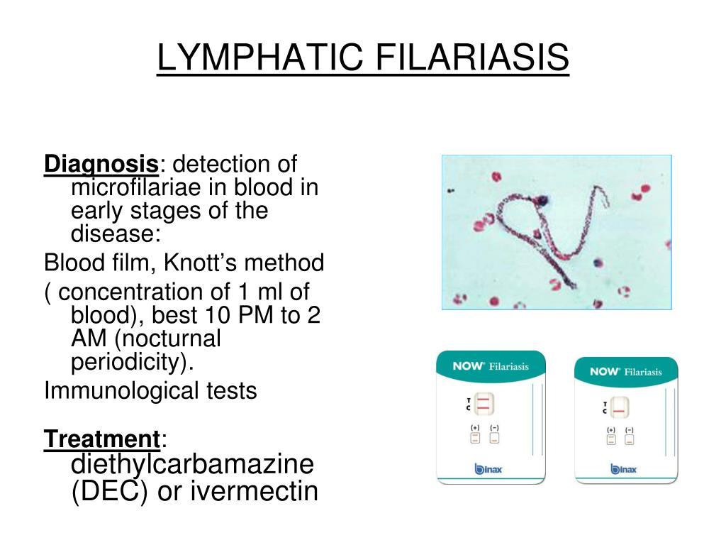 Ppt Tissue Nematodes Powerpoint Presentation Id 297497