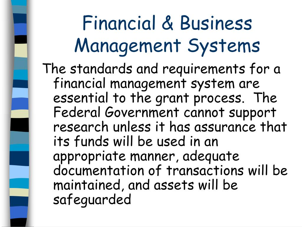 Financial & Business Management Systems
