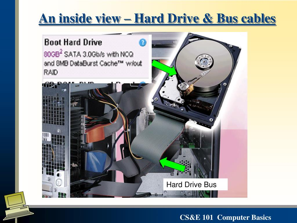 An inside view – Hard Drive & Bus cables