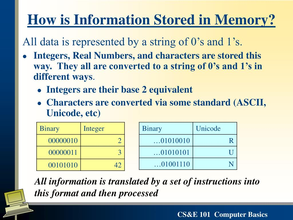 How is Information Stored in Memory?