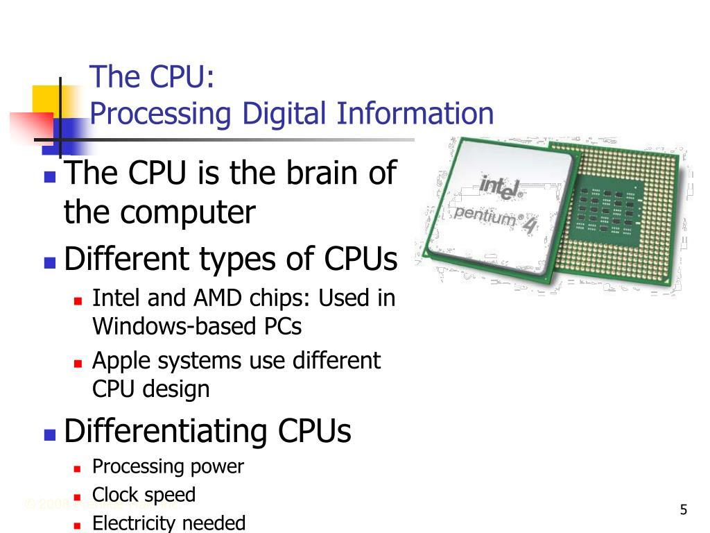 The CPU: