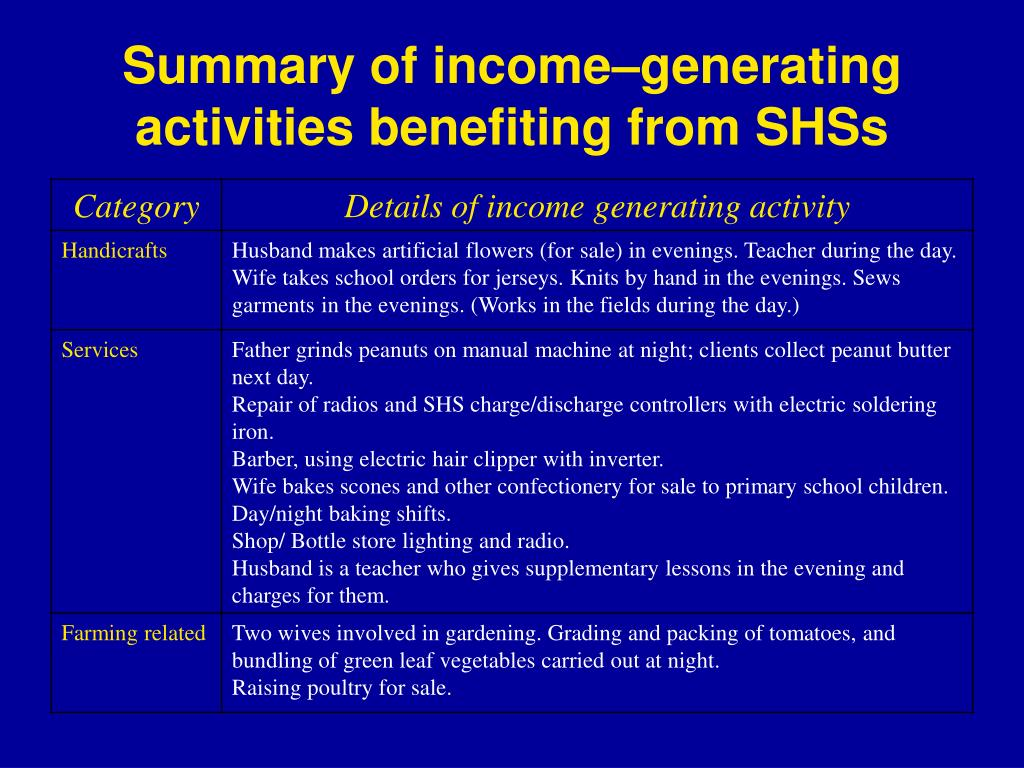 Summary of income–generating activities benefiting from SHSs