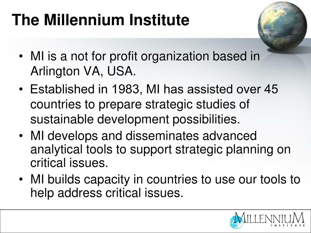 The Millennium Institute