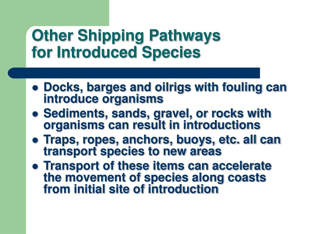 Other Shipping Pathways