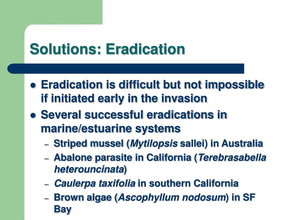 Solutions: Eradication