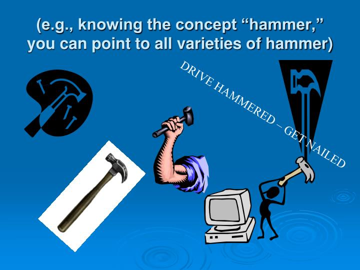 "(e.g., knowing the concept ""hammer,"" you can point to all varieties of hammer)"