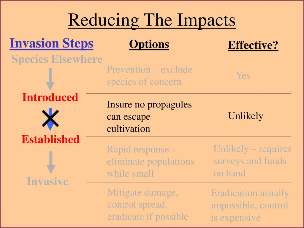 Reducing The Impacts