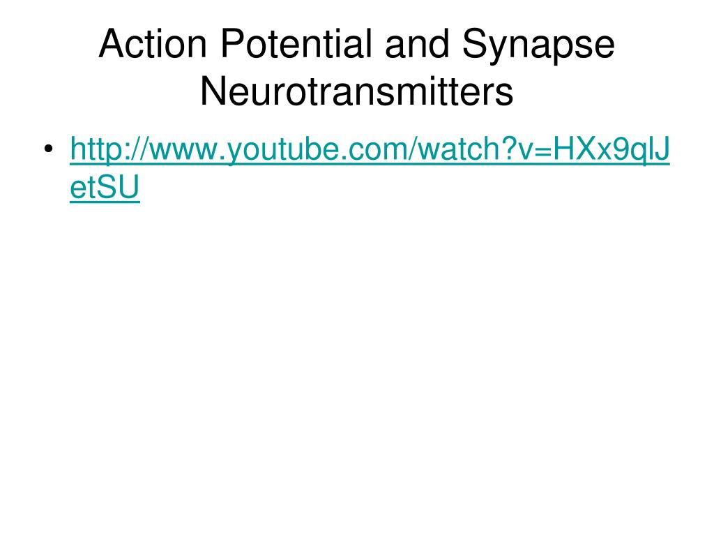Action Potential and Synapse Neurotransmitters