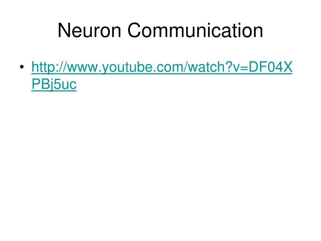 Neuron Communication