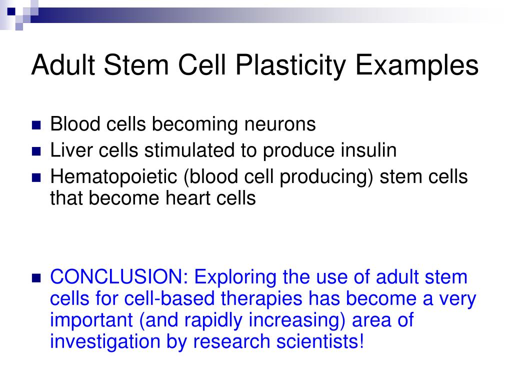 Adult Stem Cell Plasticity Examples