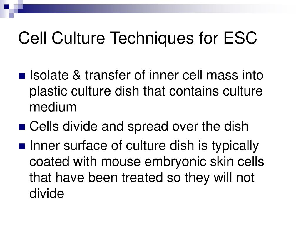 Cell Culture Techniques for ESC
