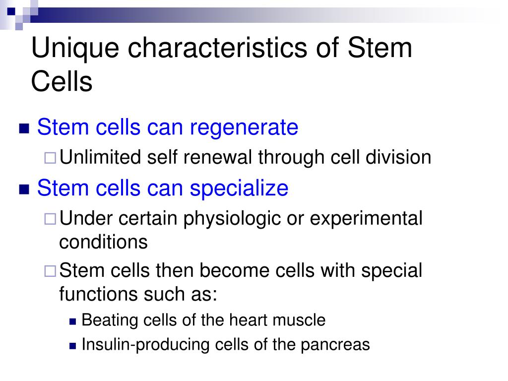 Unique characteristics of Stem Cells