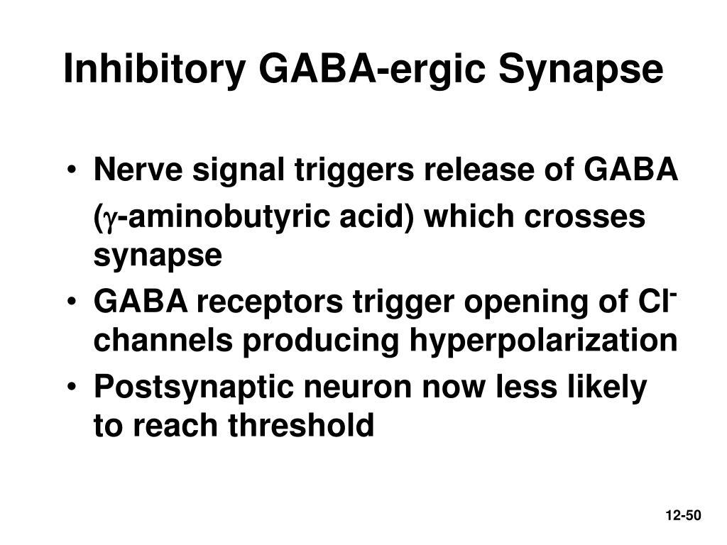 Inhibitory GABA-ergic Synapse