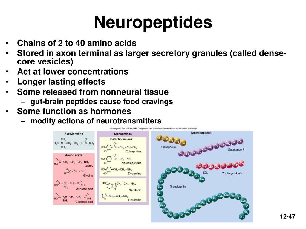 Neuropeptides