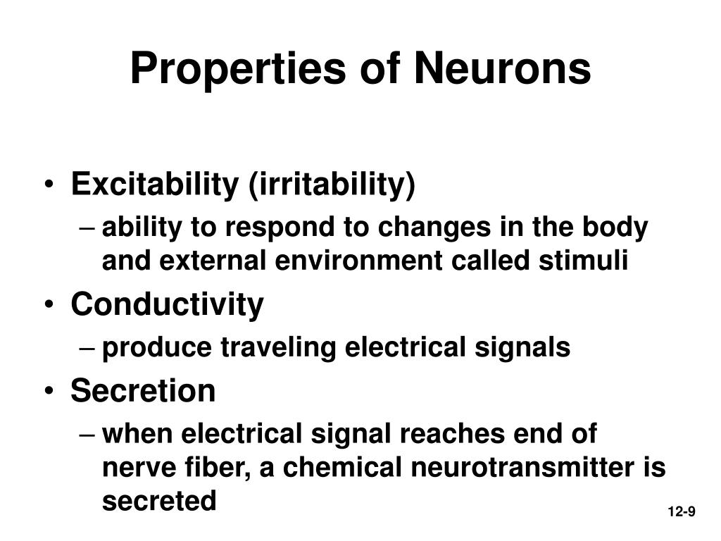 Properties of Neurons