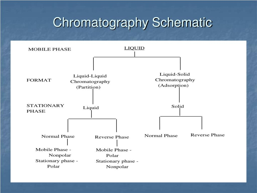 Chromatography Schematic