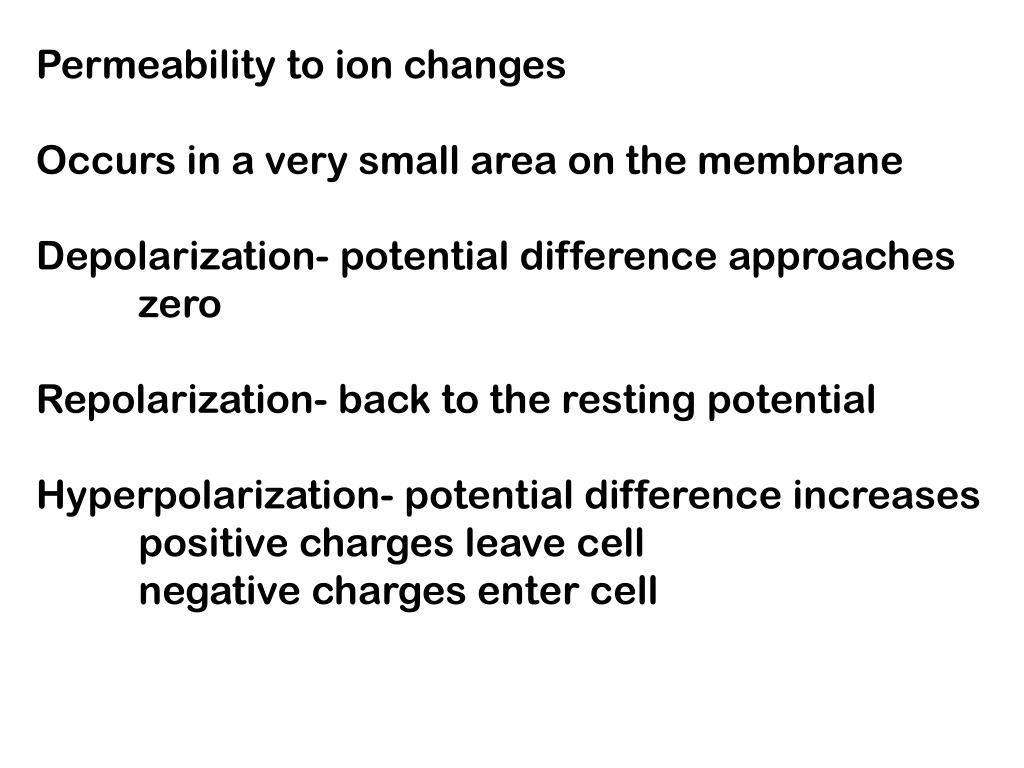 Permeability to ion changes