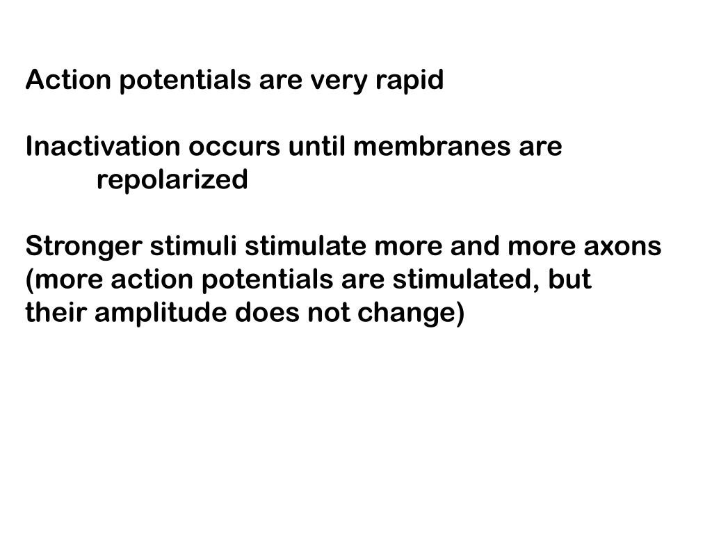 Action potentials are very rapid