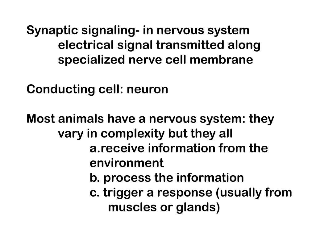 Synaptic signaling- in nervous system