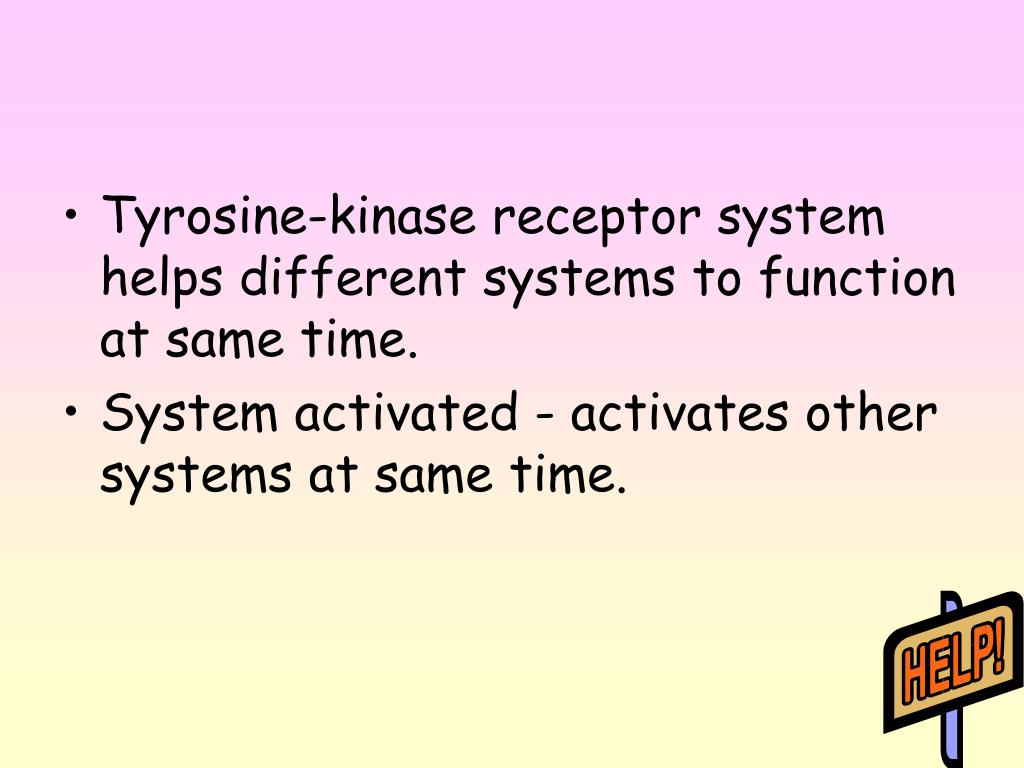 Tyrosine-kinase receptor system helps different systems to function at same time.