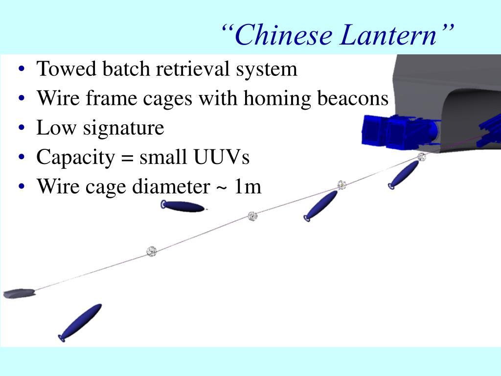 """""""Chinese Lantern"""""""