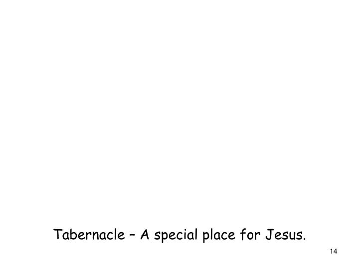 Tabernacle – A special place for Jesus.
