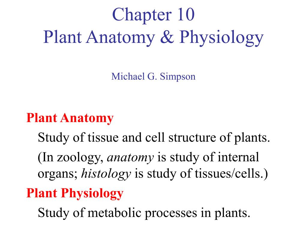 Scope of plant anatomy