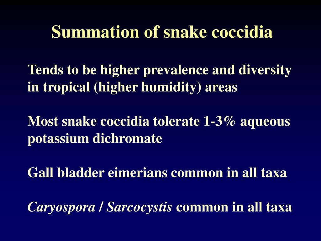 Summation of snake coccidia